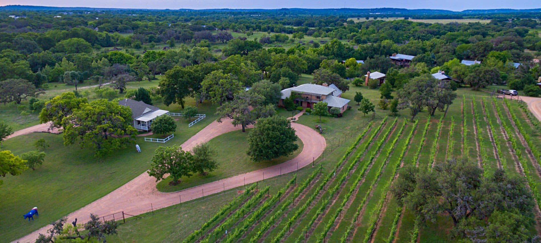 Large panoramic overhead view of vineyards and houses in rolling green hills.